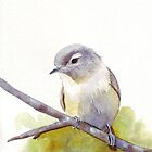 Bird watercolor by Louise De Masi