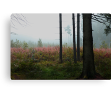 Forest meadow in mist Canvas Print