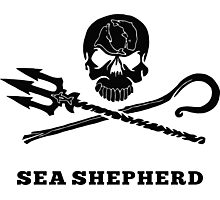 Sea Sheperd Photographic Print