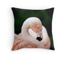 Portrait of a pink flamingo Throw Pillow