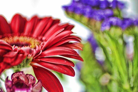 Flowers In Bloom by ©Josephine Caruana