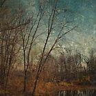 Barren Trees Near the End of Winter by Derek Audette