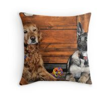Did You Just Fart ??? Throw Pillow