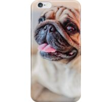Pug Mops Dog (6815) iPhone Case/Skin