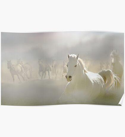 Horses Run 2 Poster