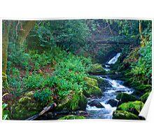 Waterfall, Inistioge, County Kilkenny, Ireland Poster