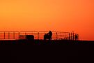 Sunset On The Cow Pen by barnsis