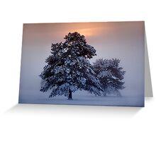 Ashdown Forrest Snow Scene Greeting Card