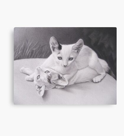 Playful Kittens Canvas Print