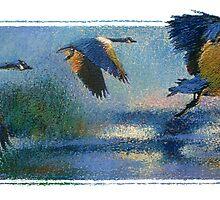 Geese by Guennadi Kalinine