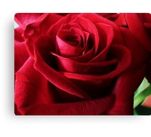 The Red Rose, like Love, is full of mystery Canvas Print