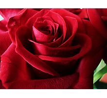 The Red Rose, like Love, is full of mystery Photographic Print