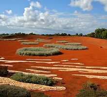Desert Landscape by Maggie Hegarty