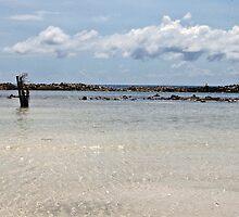 Baby Beach Aruba  by John  Kapusta
