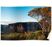 View from Narrow Neck, Blue Mountains, Australia Poster