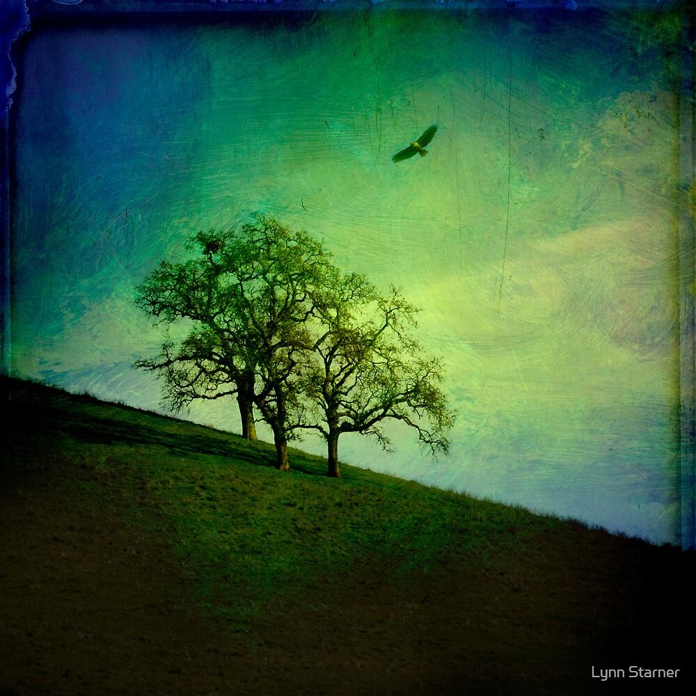Oak Trees and Hawk by Lynn Starner