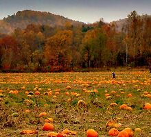A Fall Scene - PUMPKIN PATCH ^ by ctheworld