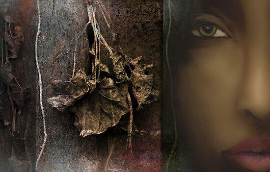 Bernadiah by Carmen Holly
