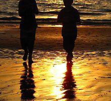 Beach Boys by Susan Segal