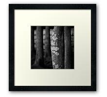 verticality 1 kyoto monochrome Framed Print