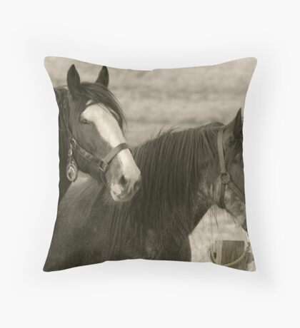 Clydesdale Couple Throw Pillow