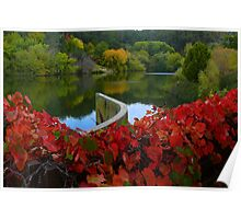 Autumn Refections Poster