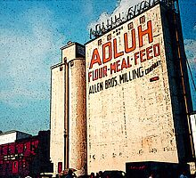 Adluh Flour in the Congaree Vista by ZeroAlphaActual