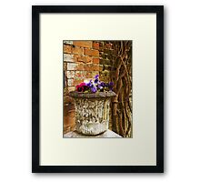 By the garden wall..... Framed Print