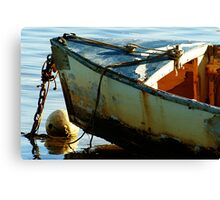 Rust Bucket 1 Canvas Print