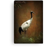 Bringer of luck - Japanese Crane Canvas Print