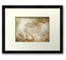 Live, Dream, Discover. Framed Print
