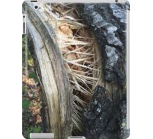 Tree Trunk Torn By the Storm iPad Case/Skin
