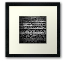 Pathway monochrome Framed Print