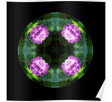Pink Hydrangea Kaleido Poster