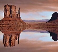 MIRRORED DESERT by Spiritinme