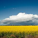 Storms over Horsham by Andrew Cowell