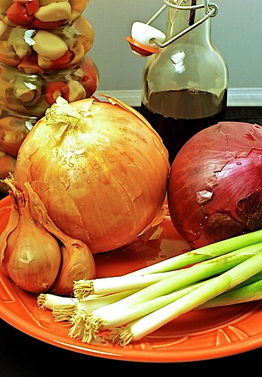 Onion Two by Russell L. Frayre / Photographer