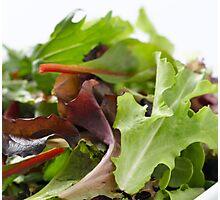 Salad Photographic Print