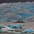 Medenhall Glacier & Ice Bergs by JMChown