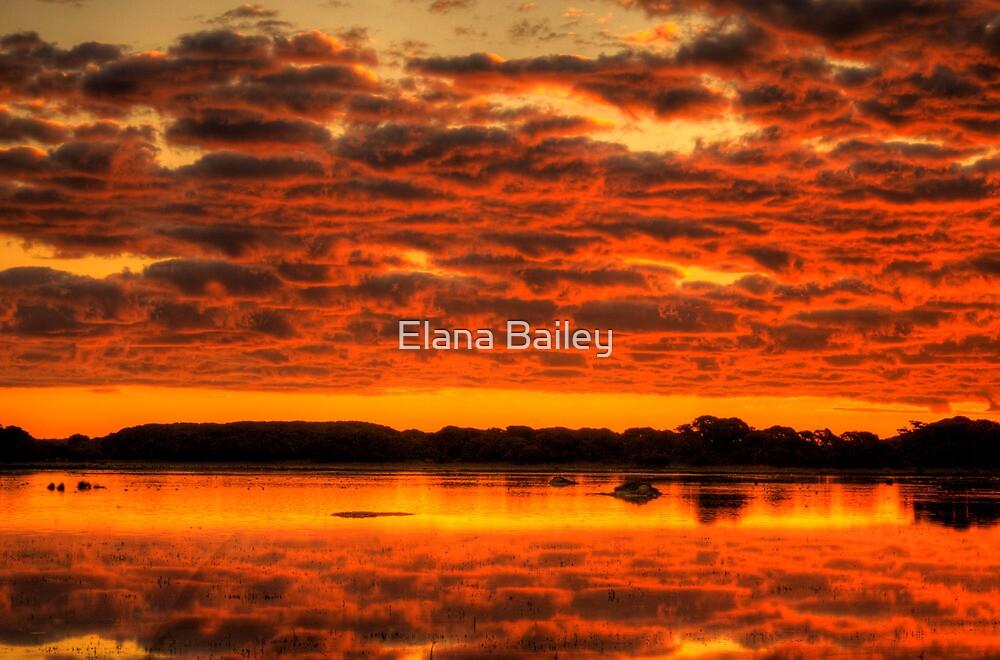 Clouds reflected brilliantly at Rivoli Wetlands, Beachport by Elana Bailey