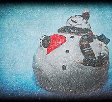 Frosty Mania by Denise Abé