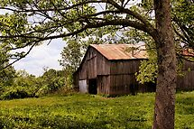 Another Spring ~ the Old Barn Still Stands by SummerJade