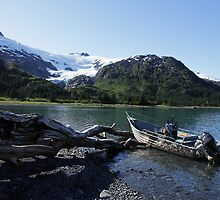 Alaskan Pleasures by Gary L   Suddath