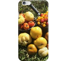 Tomato Harvest iPhone Case/Skin