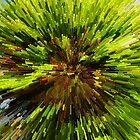 """Lime Implosion by David """"Oz""""  Osterczy"""
