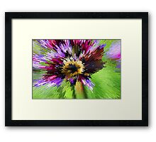 Bumble B Implosion Framed Print
