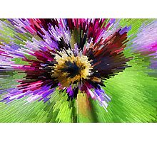 Bumble B Implosion Photographic Print