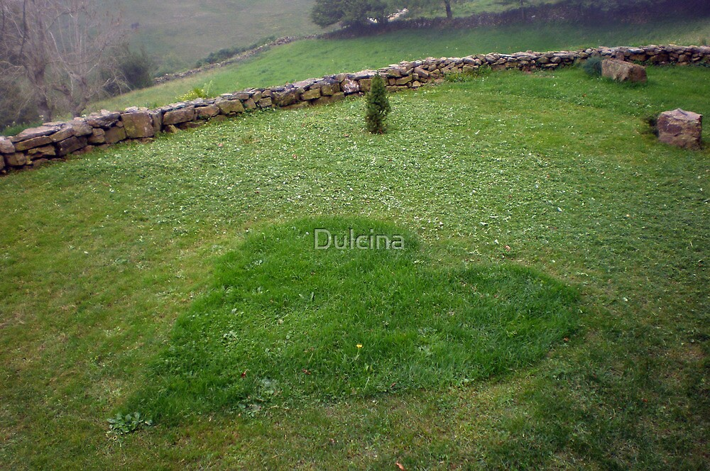 Grass heart by Dulcina