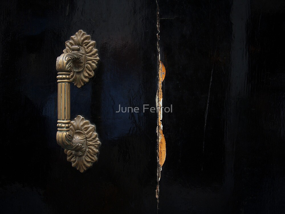 WHO SAID I WAS PERFECT by June Ferrol