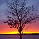Sunset over Lake Charlevoix- Boyne City, Michigan by Melissa Delaney